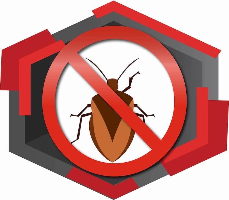 bed bug control service